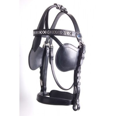Ideal Luxury Bridle-717
