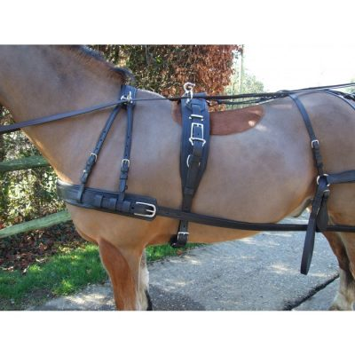 Ideal Luxury Harness-740