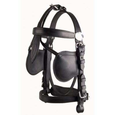Ideal LeatherTech bridle-716