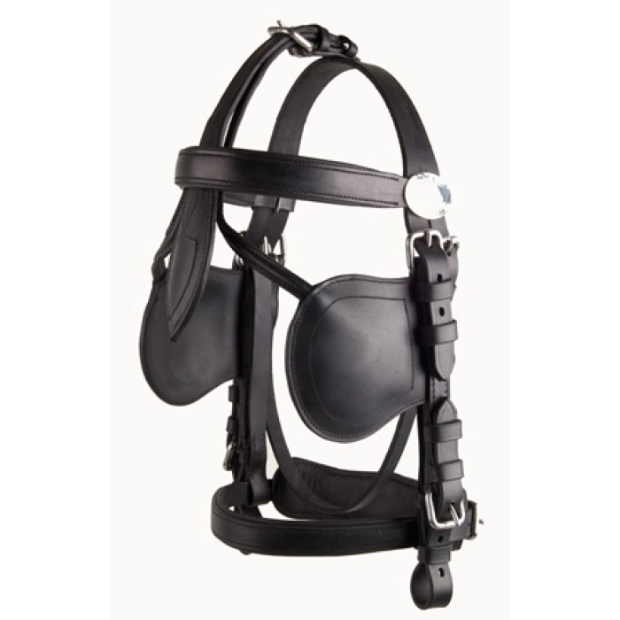 Ideal LeatherTech bridle-716